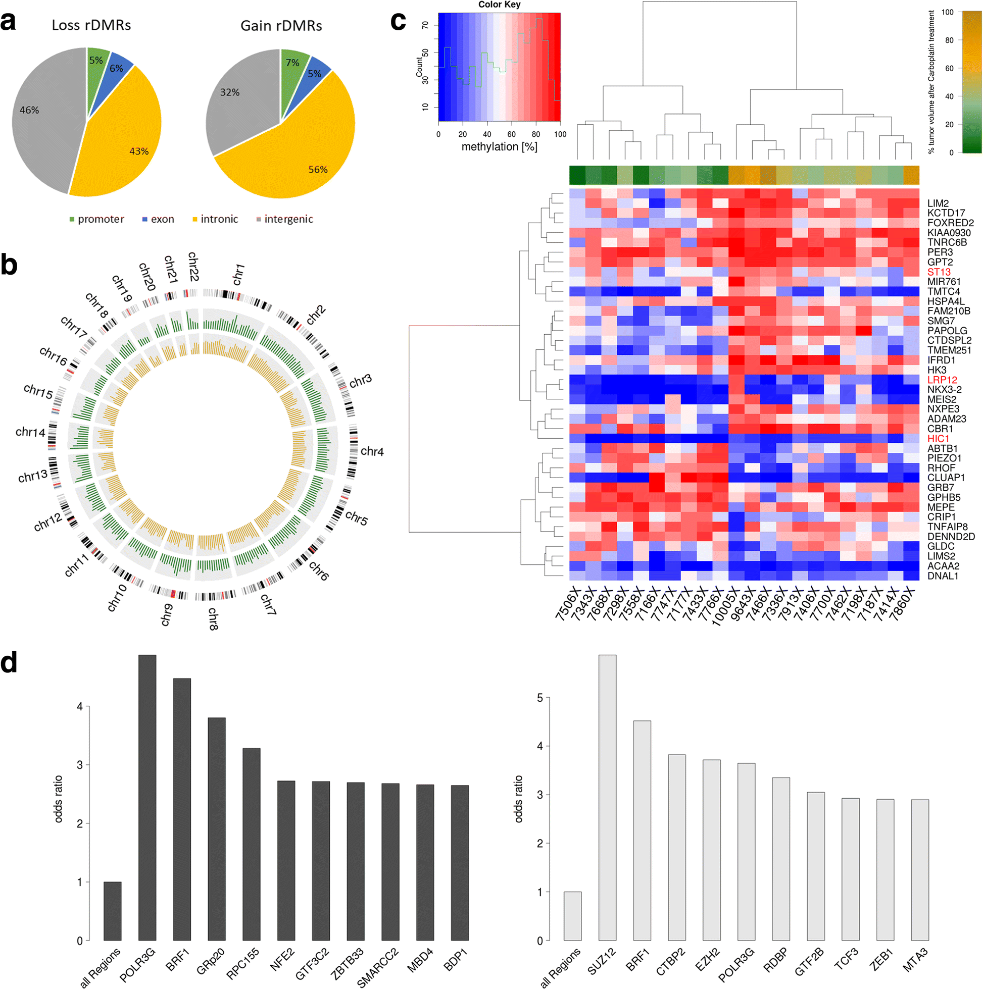 Epigenomic Profiling Of Non Small Cell Lung Cancer Xenografts Molecular Expressions Electricity And Magnetism Resistance Fig 4