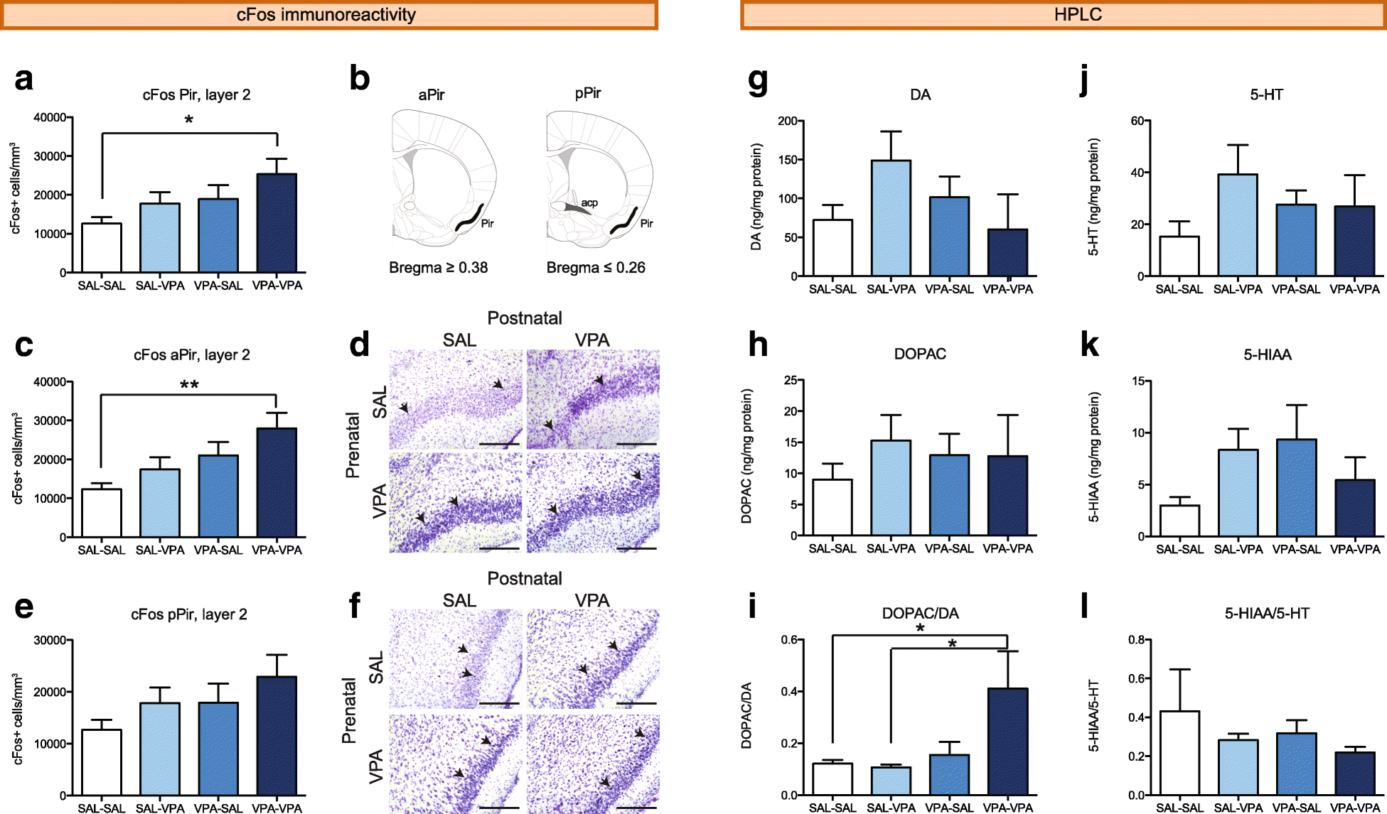 Insular Cortex Alterations In Mouse >> Sociability Deficits After Prenatal Exposure To Valproic Acid Are