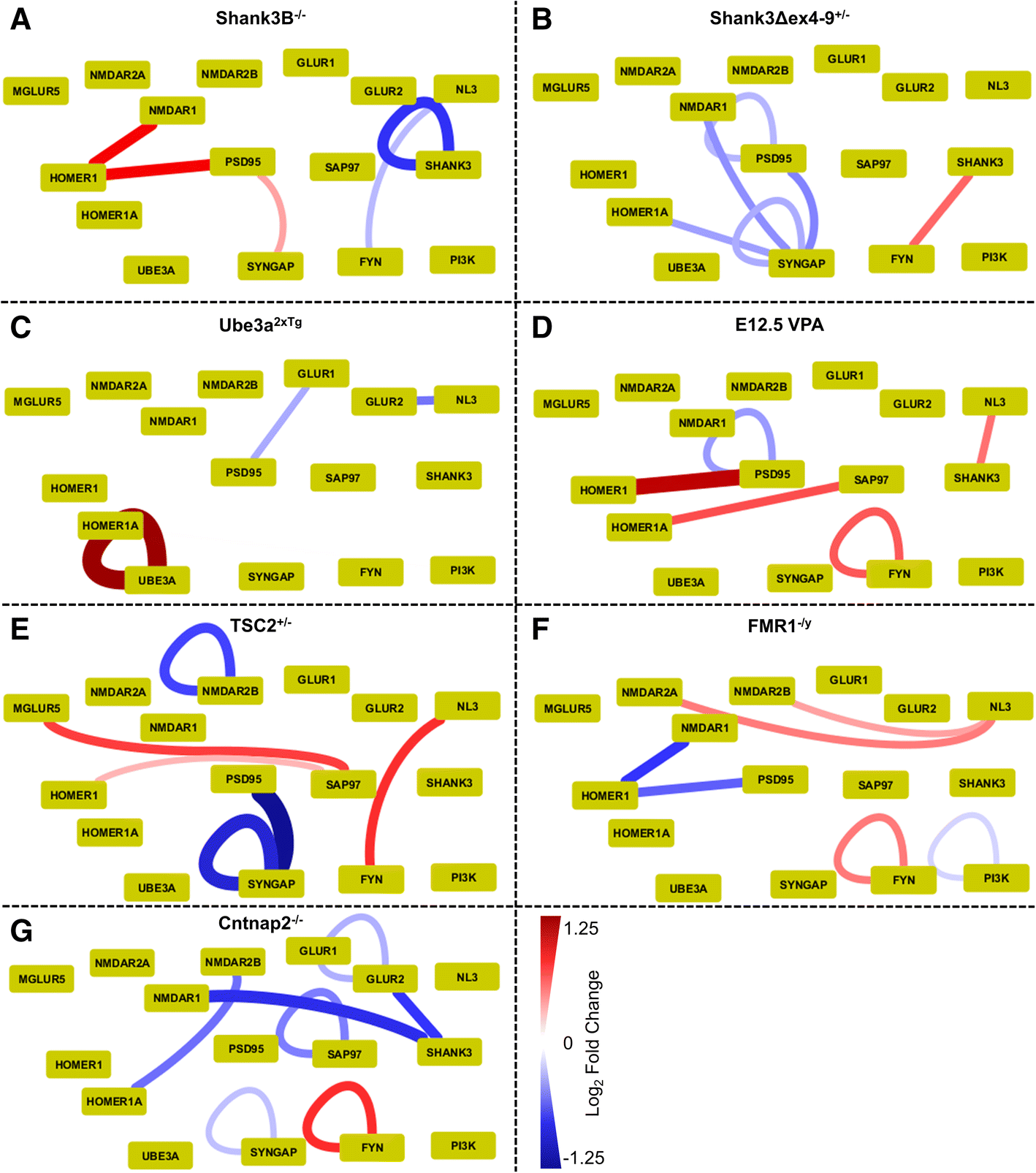 Clustering The Autisms Using Glutamate Synapse Protein Interaction 0 99 Counter Circuit Diagram Fig 2