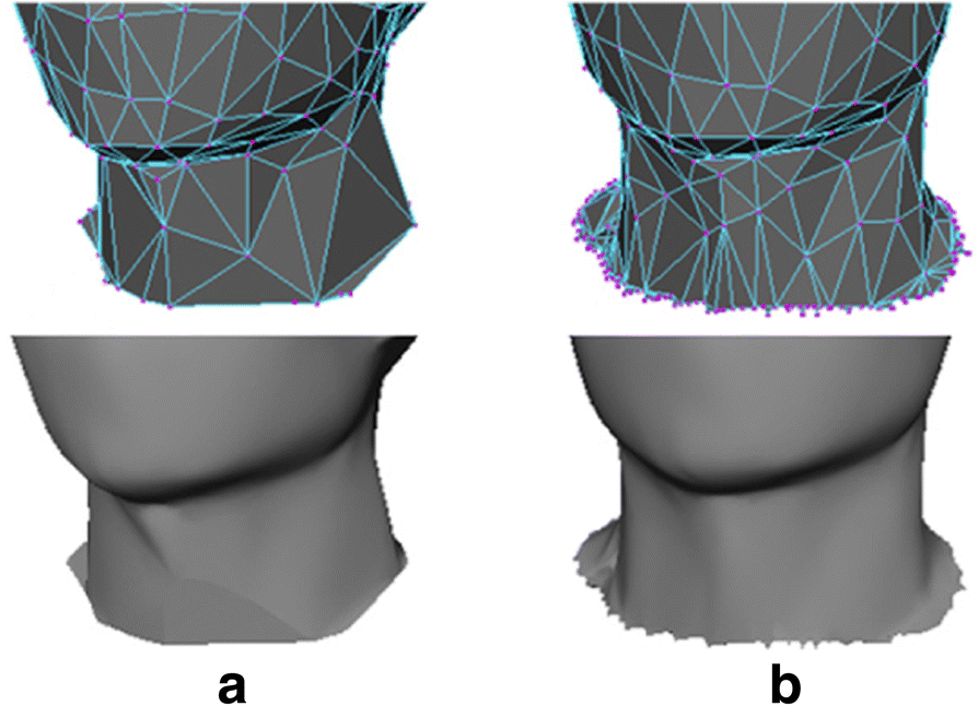 Research and application of personalized human body simplification
