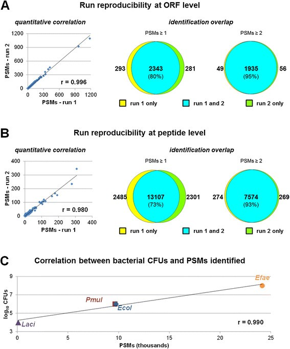 A Straightforward And Efficient Analytical Pipeline For Metaproteome