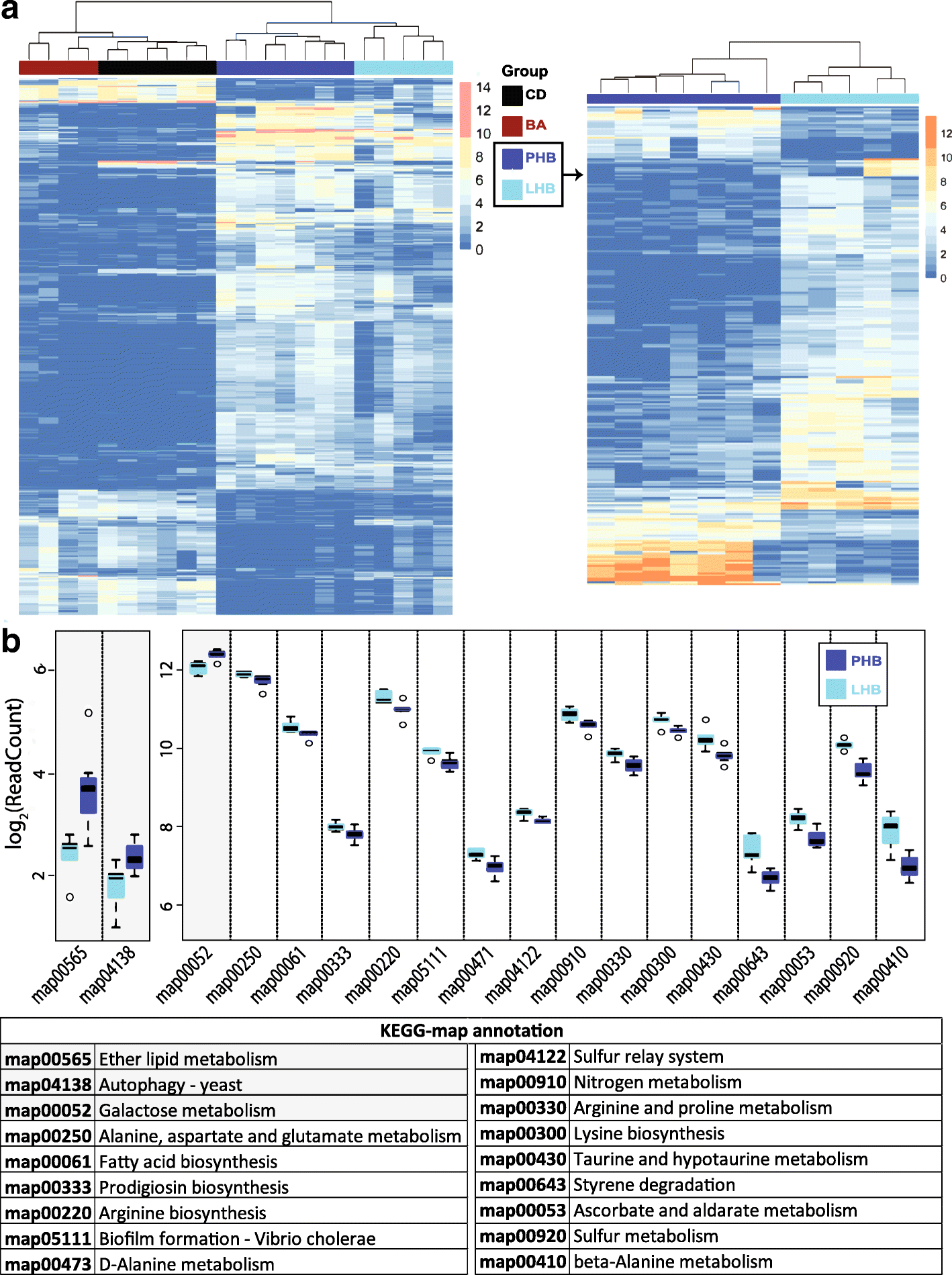 The Gut Microbiota Drives Impact Of Bile Acids And Fat Source In How To Troubleshoot 4way Switches Electrical 101 Fig 4