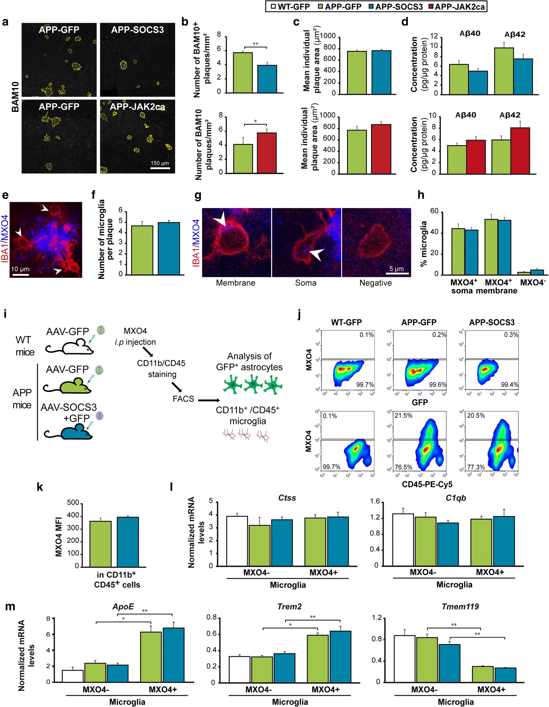 Modulation Of Astrocyte Reactivity Improves Functional Deficits In Snap Circuits Extreme Educational 750 Exp Fig 4