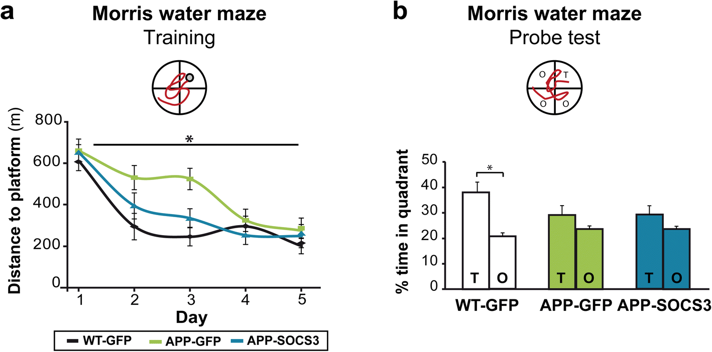 Modulation Of Astrocyte Reactivity Improves Functional Deficits In Snap Circuits Extreme Educational 750 Exp Fig 5