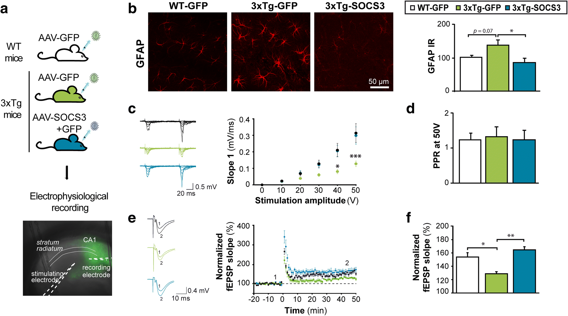 Modulation Of Astrocyte Reactivity Improves Functional Deficits In Snap Circuits Extreme Educational 750 Exp Fig 6