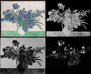 ee8dd83591 Van Gogh s Irises and Roses  the contribution of chemical analyses ...
