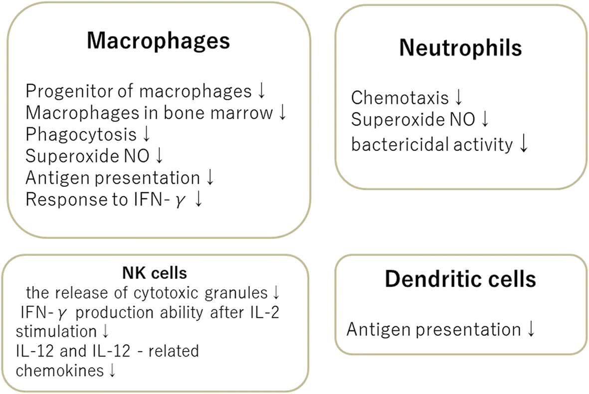 Immunosenescence in neurocritical care | Journal of Intensive Care