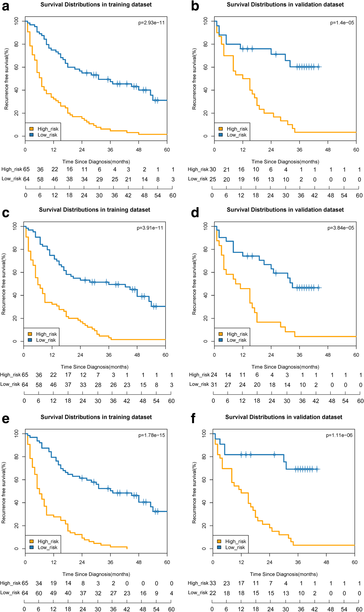Prediction early recurrence of hepatocellular carcinoma eligible for