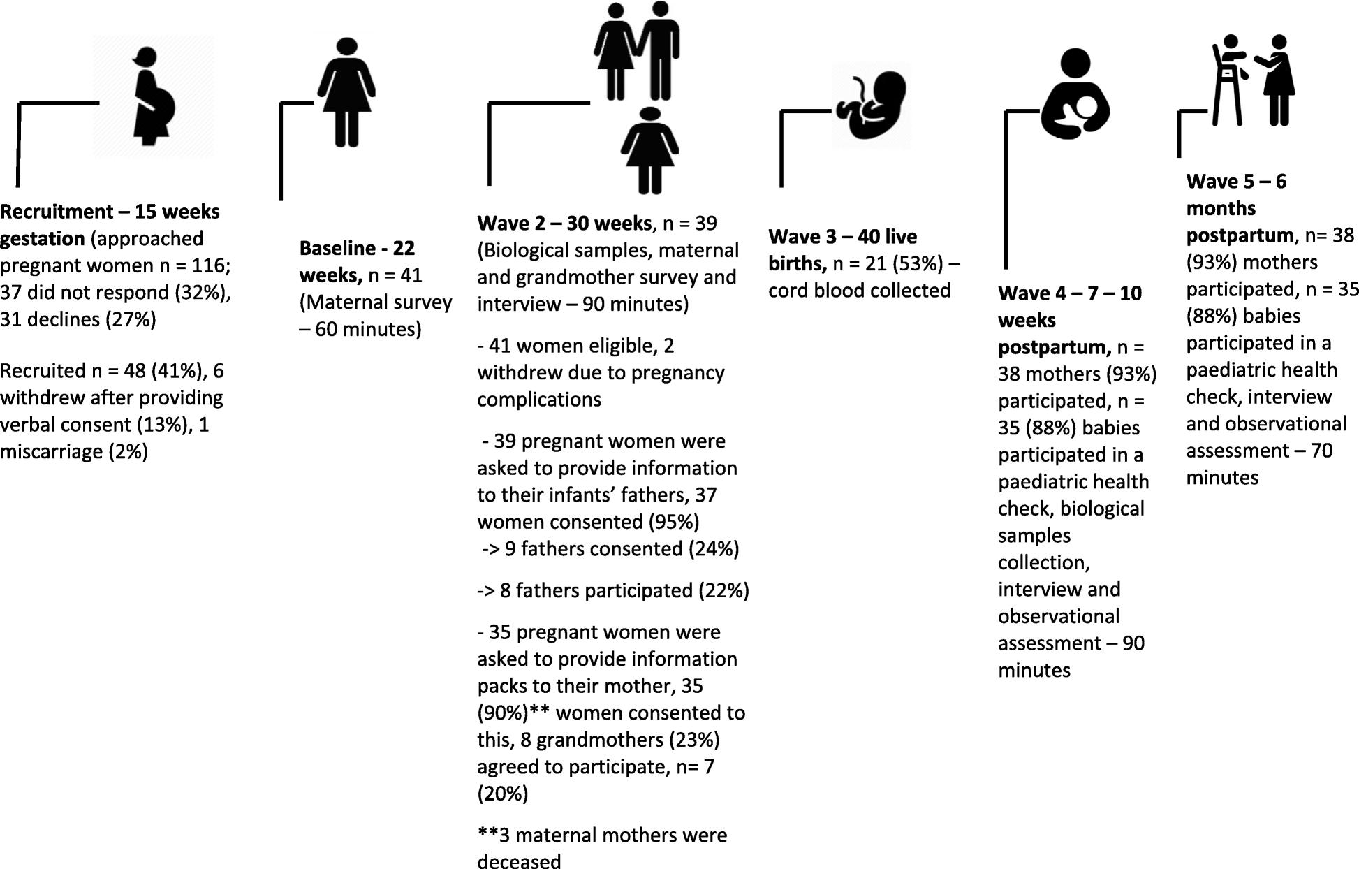 de55f2d0923 Illawarra Born cross-generational health study  feasibility of a ...