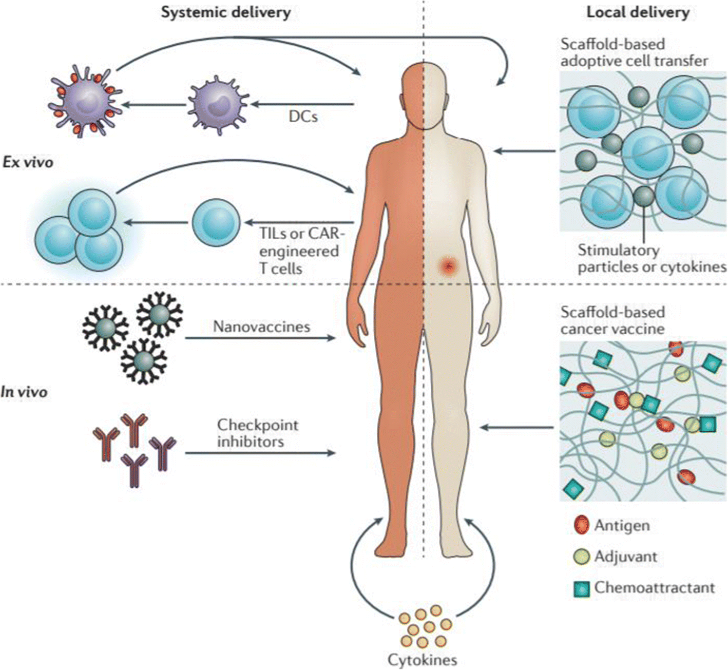 New Opportunities For Nanoparticles In Cancer