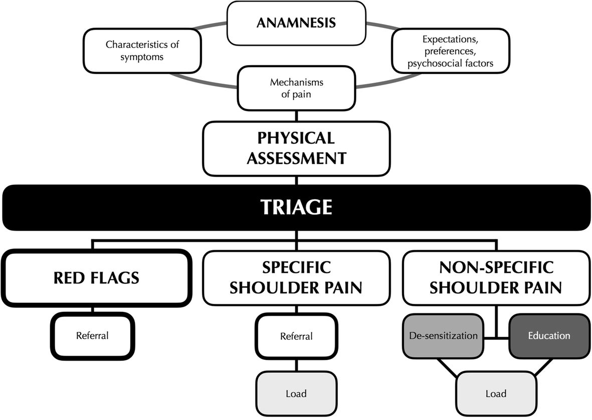 Towards An Integrated Clinical Framework For Patient With Shoulder