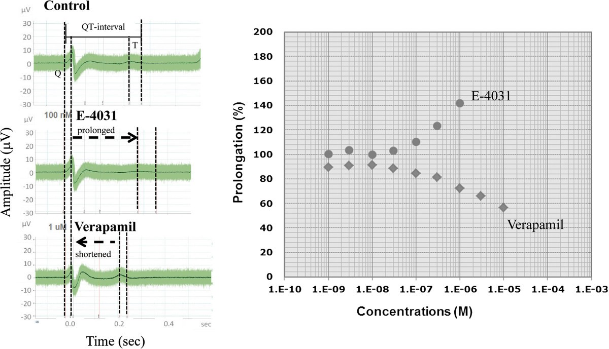 Conjoint Propagation And Differentiation Of Human Embryonic Stem 598 X 441 48 Kb Jpeg Heart Rate Monitor Circuit Diagram Source Figure 6
