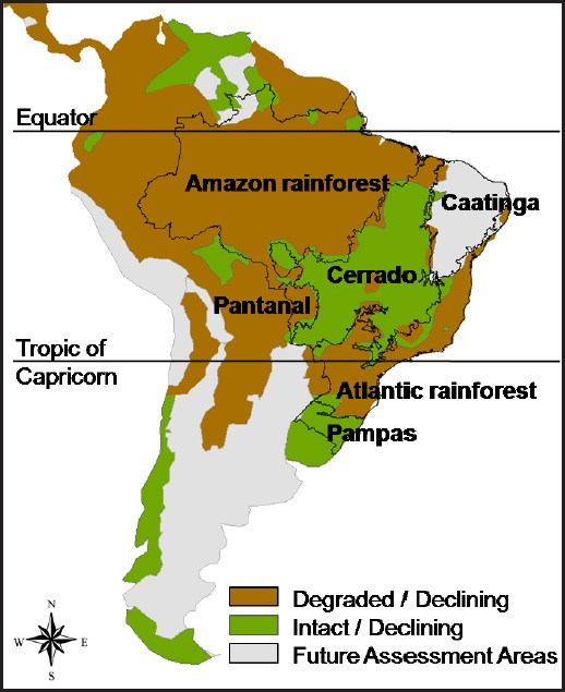 The Use of Fire in the Cerrado and Amazonian Rainforests of ... Map Of South America Amazon Forest on amazon forest colombia, amazon forest ecuador map, amazon forest peru, amazon forest brazil map, amazon forest in south america, amazon forest on map, amazon forest world map,