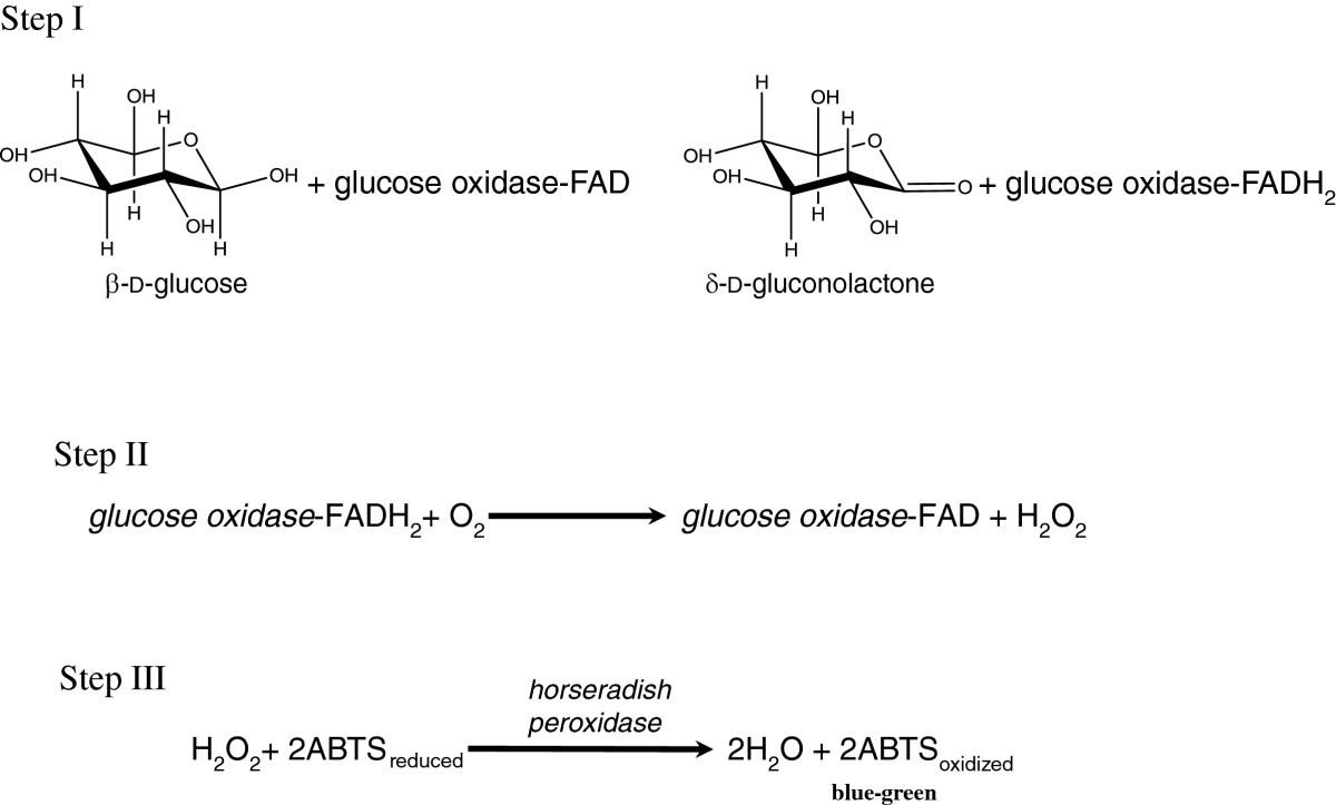 Supramolecular Glucose Oxidase SWNT Conjugates Formed By