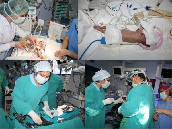 Transthoracic echocardiography study
