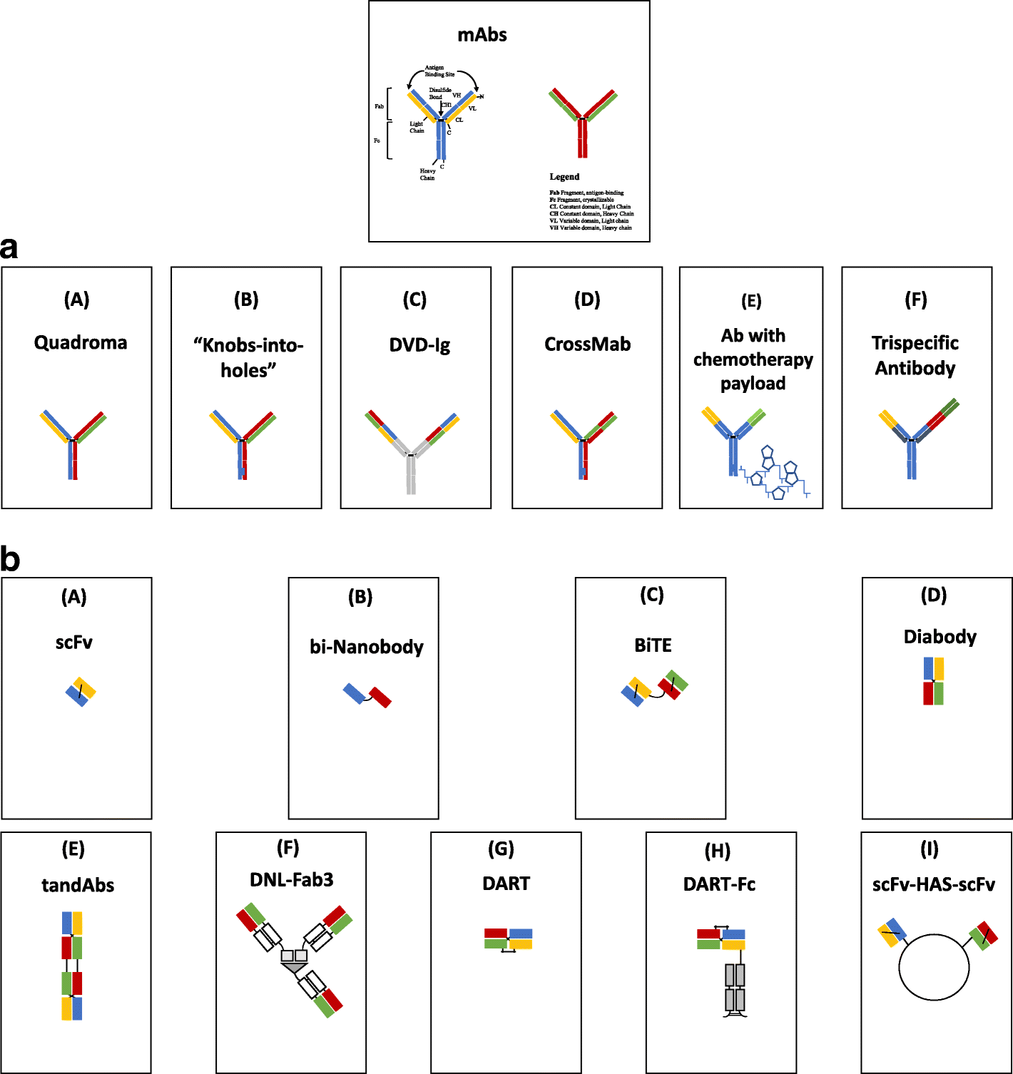 Trispecific Antibody Usually Created By Using Variable: Bi-specific And Tri-specific Antibodies- The Next Big