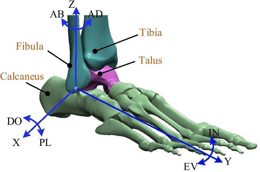 GAIT - Foot Drop - cover