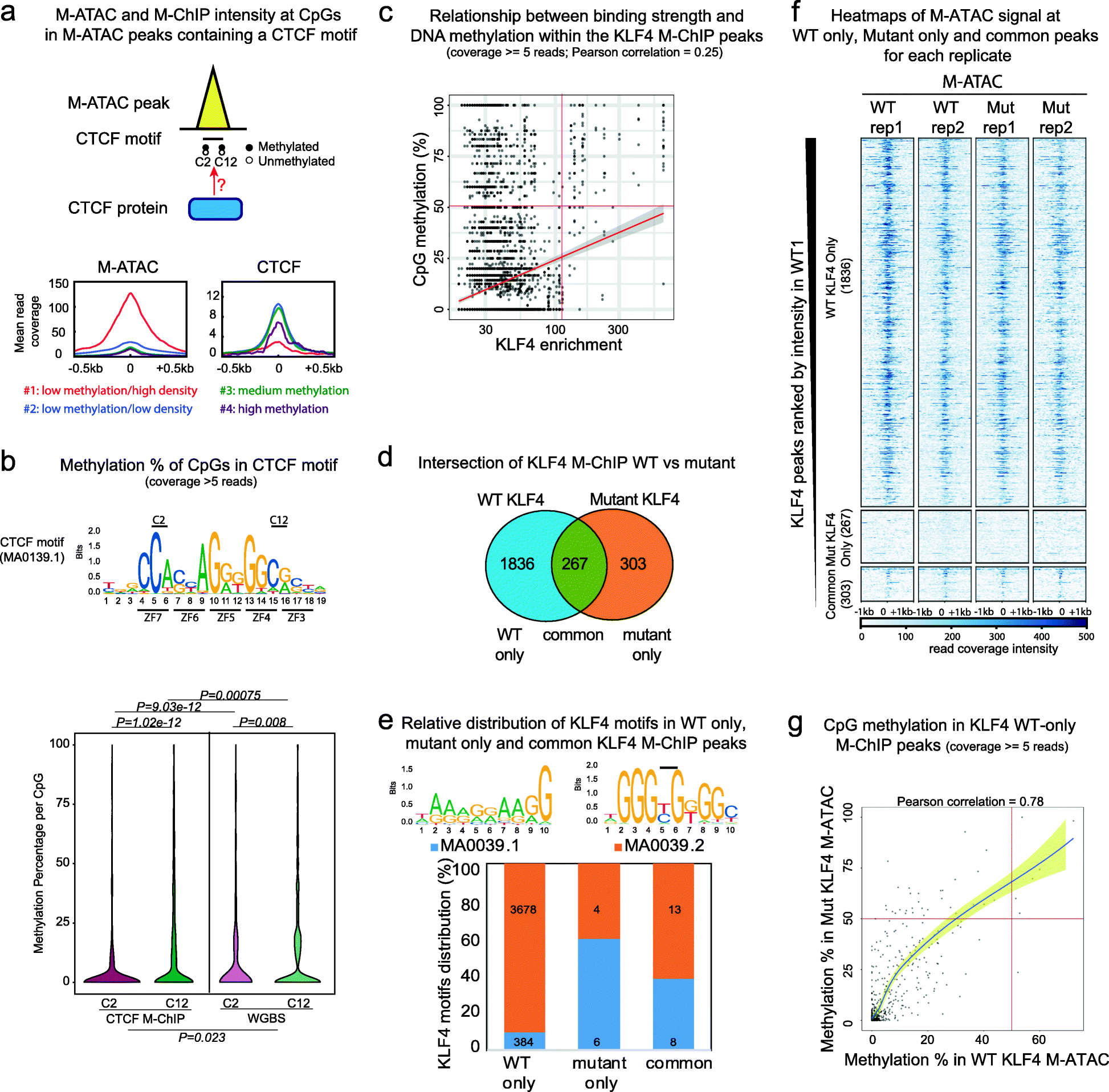 EpiMethylTag: Simultaneous Detection Of ATAC-seq Or ChIP
