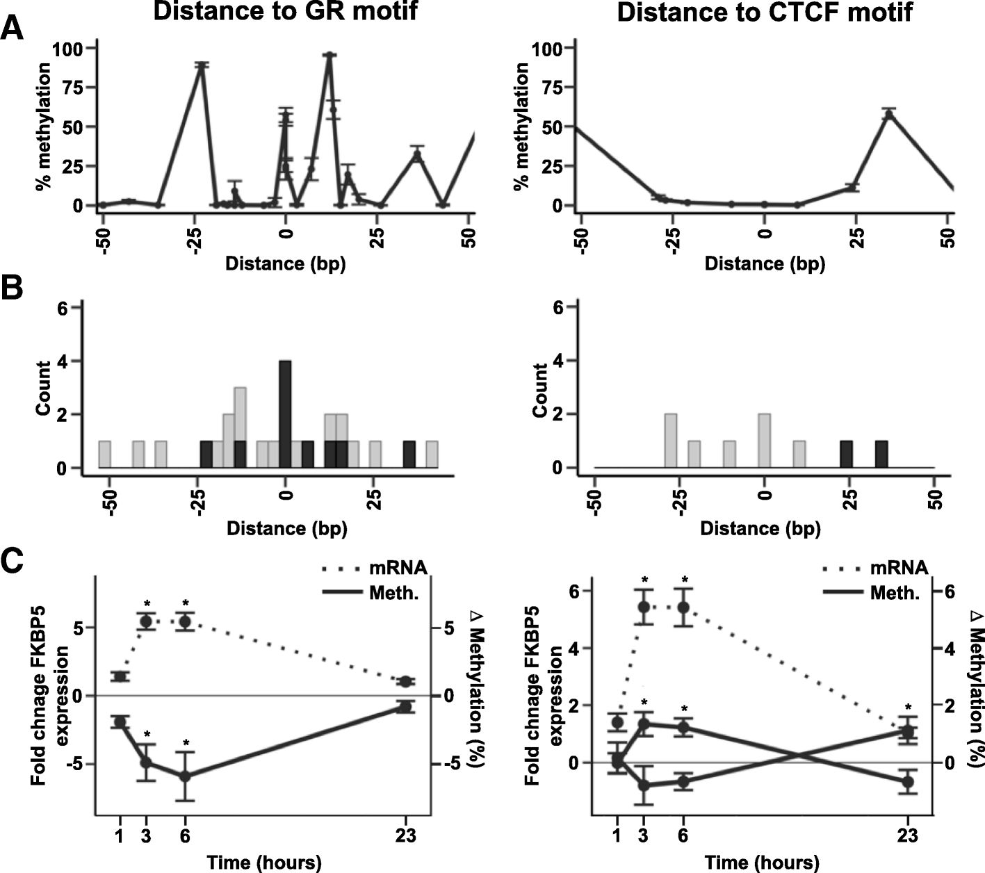 Identification Of Dynamic Glucocorticoid-induced