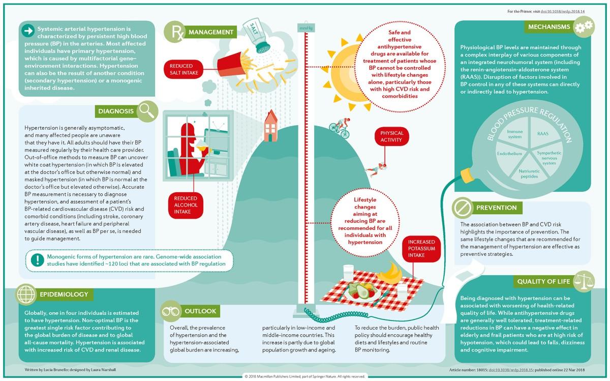 Hypertension - Nature Reviews Disease Primers