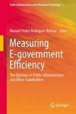 The Need for Analyzing e-Government Efficiency: An Introduction