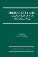 Genesis: a neuronal simulation system