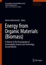 Renewable Energy from Biomass: Introduction