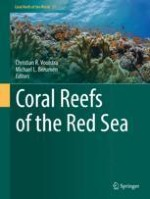 The Red Sea: Environmental Gradients Shape a Natural Laboratory in a Nascent Ocean