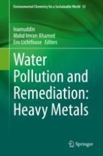 Sources and Health Risks of Rare Earth Elements in Waters