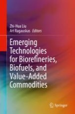 Challenges and Perspectives of Biorefineries