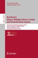 Lightweight U-Nets for Brain Tumor Segmentation