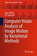 Image Motion Processing in Visual Function