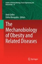 Mechanical Behavior and Properties of Adipose Tissue