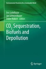 Chlorine for Water Disinfection: Properties, Applications and Health Effects