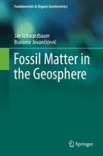 Origin and Transformations of Organic Matter in Geosphere