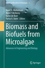 Past, Present and Future of Microalgae Cultivation Developments