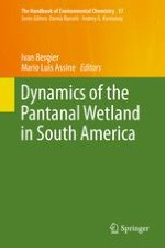 Underneath the Pantanal Wetland: A Deep-Time History of Gondwana Assembly, Climate Change, and the Dawn of Metazoan Life