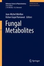 Different Shades of Fungal Metabolites: An Overview
