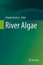 An Overview of River Algae