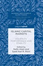Islamic Capital Market Research: Past Trends and Future Considerations