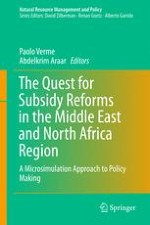 Subsidy Reforms in the Middle East and North Africa Region: A Review
