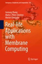 Membrane Computing - Key Concepts and Definitions