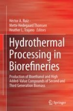How the Severity Factor in Biomass Hydrolysis Came About