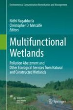 Multifunctional Wetlands: Pollution Abatement by Natural and Constructed Wetlands
