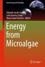 Energy from Microalgae: A Brief Introduction
