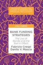 The Funding Strategies of European Banks: A Discussion