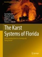Eogenetic Karst in Florida