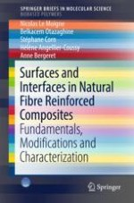 Introduction on Natural Fibre Structure: From the Molecular to the Macrostructural Level