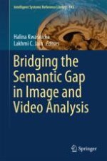 Semantic Gap in Image and Video Analysis: An Introduction