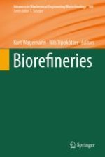Biorefineries: A Short Introduction